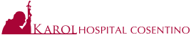 Karol Hospital Cosentino Logo